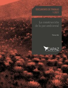 Portada Cover Working Paper 1-2021