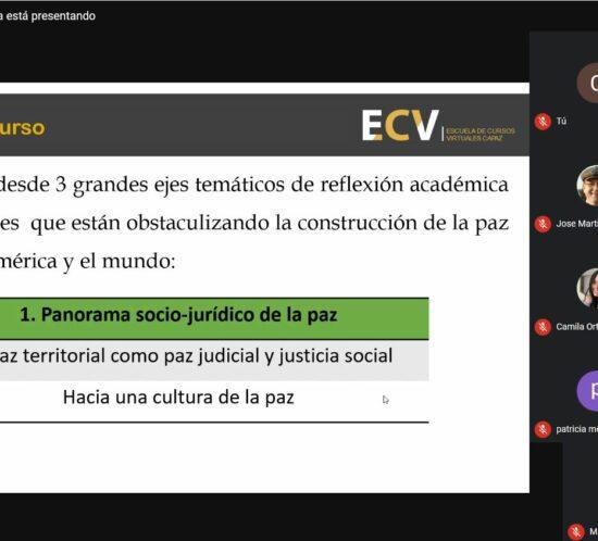 Captura de pantalla o screenshot de sesión inaugural del curso virtual de la ECV CAPAZ coordinado por Georg-August-Universität Göttingen
